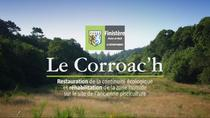 Le Corroach - Restauration et réhabilitation du site